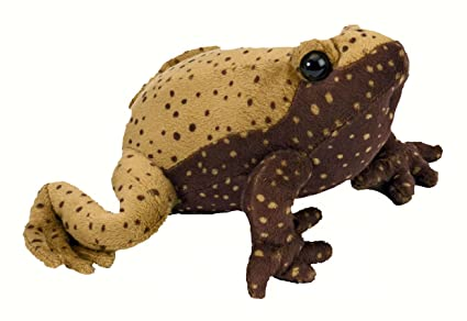 Amazon.com: Eastern Narrow Mouthed Toad With Sound Soft Toy: Toys ...