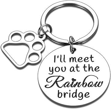 Loss of Pet Gift Loss of Dog Sympathy Pet Gifts Dog Memorial Gift Pet Memorial Gifts Gift for family lost pet Pet Memorial Keychain