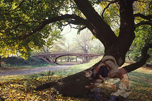 Behind The Tree by Tina Mancusi