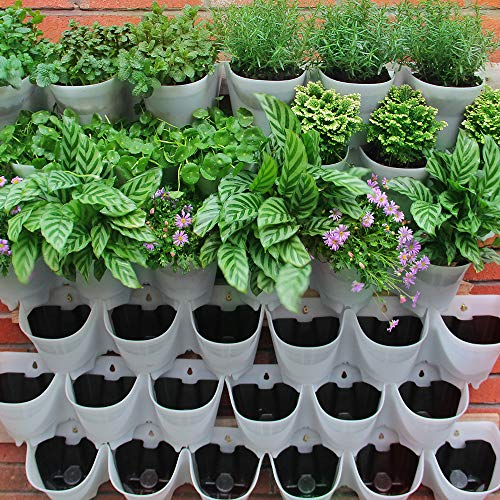 SELF Watering Vertical Wall Hangers with Pots Included - Wall Plant...
