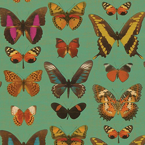 Butterflies Gift Wrap - Entertaining with Caspari 8943RSC Roll of Gift Wrap, Deyrolle Butterflies Turquoise