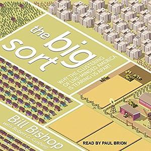 The Big Sort Audiobook
