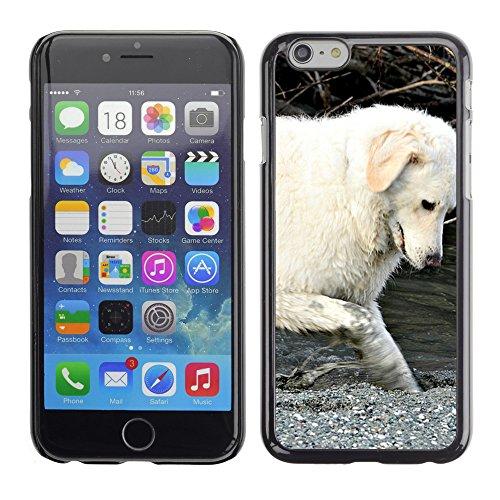 """Premio Sottile Slim Cassa Custodia Case Cover Shell // F00009513 chien // Apple iPhone 6 6S 6G 4.7"""""""