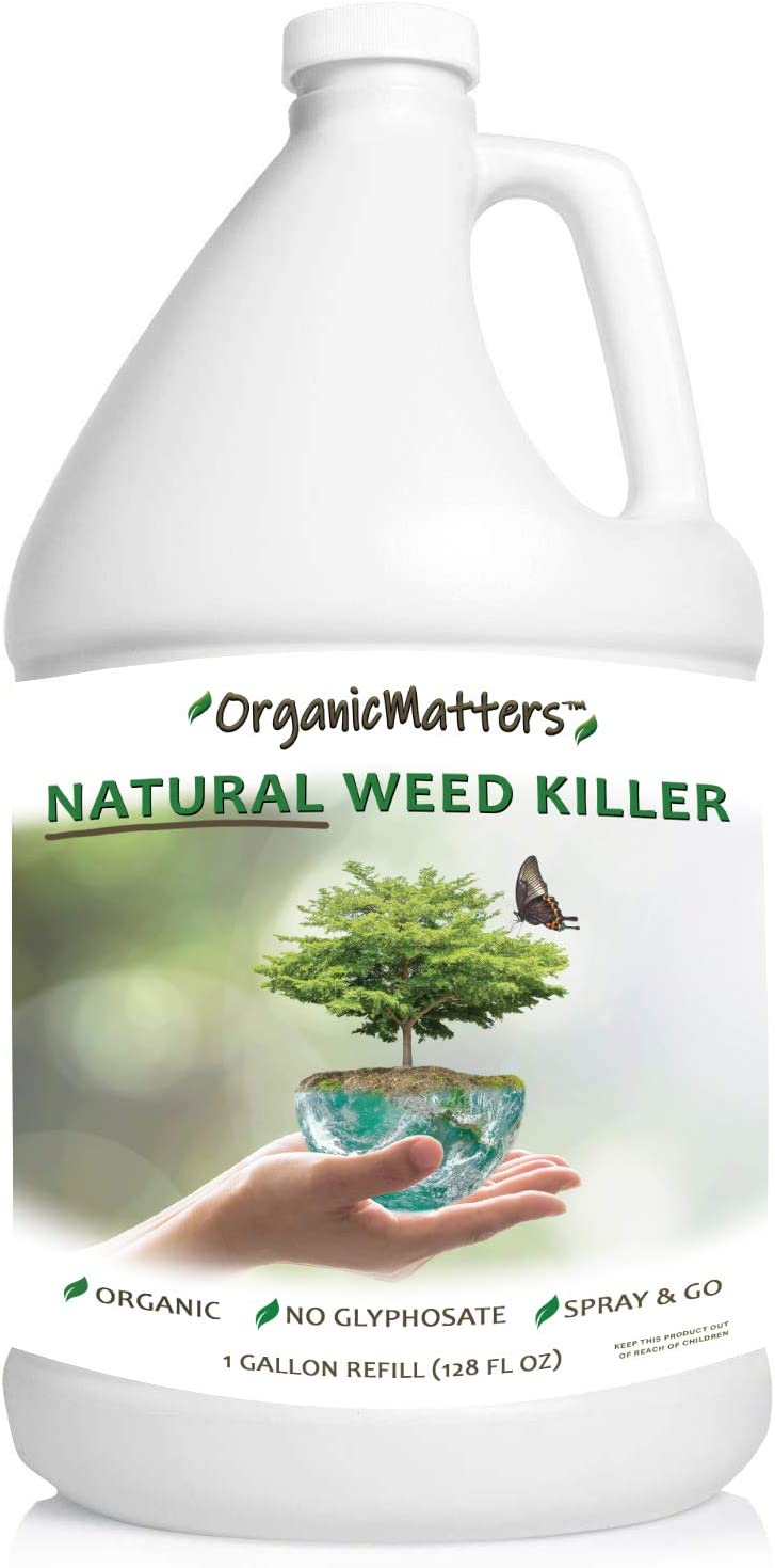 OrganicMatters Natural Weed Killer Spray, No Glyphosate, People, Pets and Eco-Friendly, Results in Less Than 24-Hours (128 oz Gallon Refill)