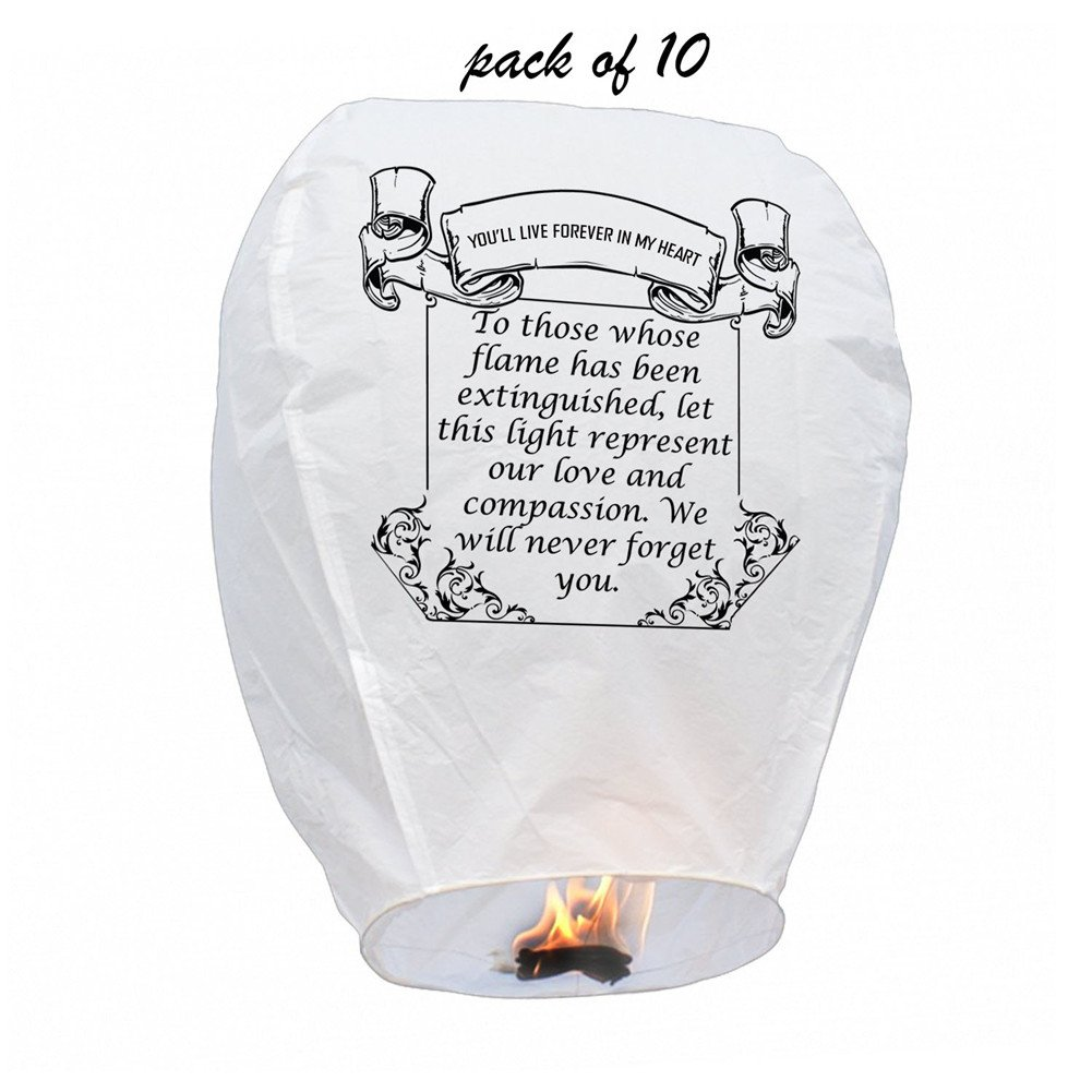 Chinese Biodegradable Sky Memory Paper Lantern,for Weddings, Chinese Festival, Memorials(pack of 10) xinlongfang