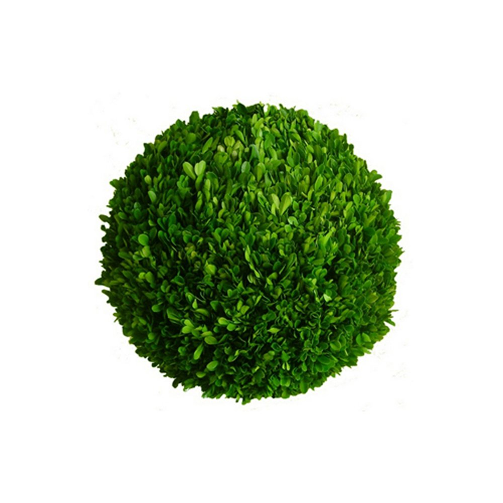 Mills Floral Company Boxwood Ball 8''