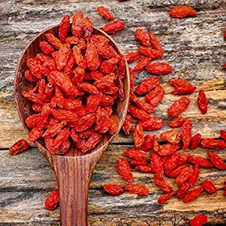 Amazon Com David S Garden Seeds Herb Goji Berry Sl8711 Red 500
