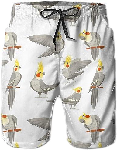 Hello Summer Sloth Mens Beach Shorts Swim Trunks Stripe Quick Dry Casual Polyester Swim Shorts