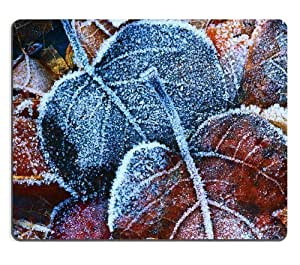 Autumn Leaves Covered Frost fragile old cold ice shards Mouse Pads Customized Made to Order Support Ready 9 7/8 Inch (250mm) X 7 7/8 Inch (200mm) X 1/16 Inch (2mm) High Quality Eco Friendly Cloth with Neoprene Rubber Liil Mouse Pad Desktop Mousepad Laptop Mousepads Comfortable Computer Mouse Mat Cute Gaming Mouse_pad