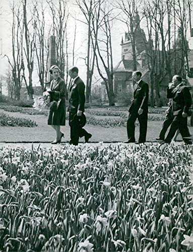 Vintage photo of King Frederik with Queen Ingrid at a lily-grove meadow outside Copenhagen, Vall246; flower park at VAll246; Castle. Tour with Reventlow