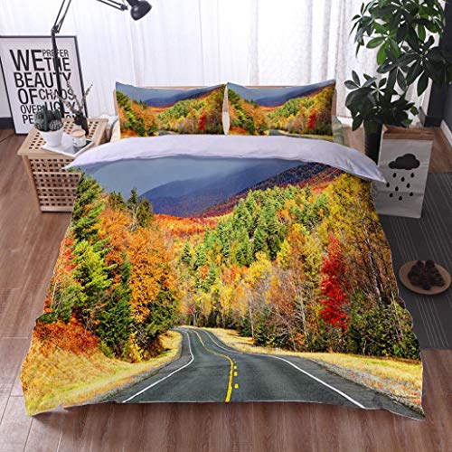 - HOOMORE Bed Comforter - 3-Piece Duvet -All Season, Scenic Autumn Road in The Adirondacks Region of New York,HypoallergenicDuvet-MachineWashable -Twin-Full-Queen-King-Home-Hotel -School