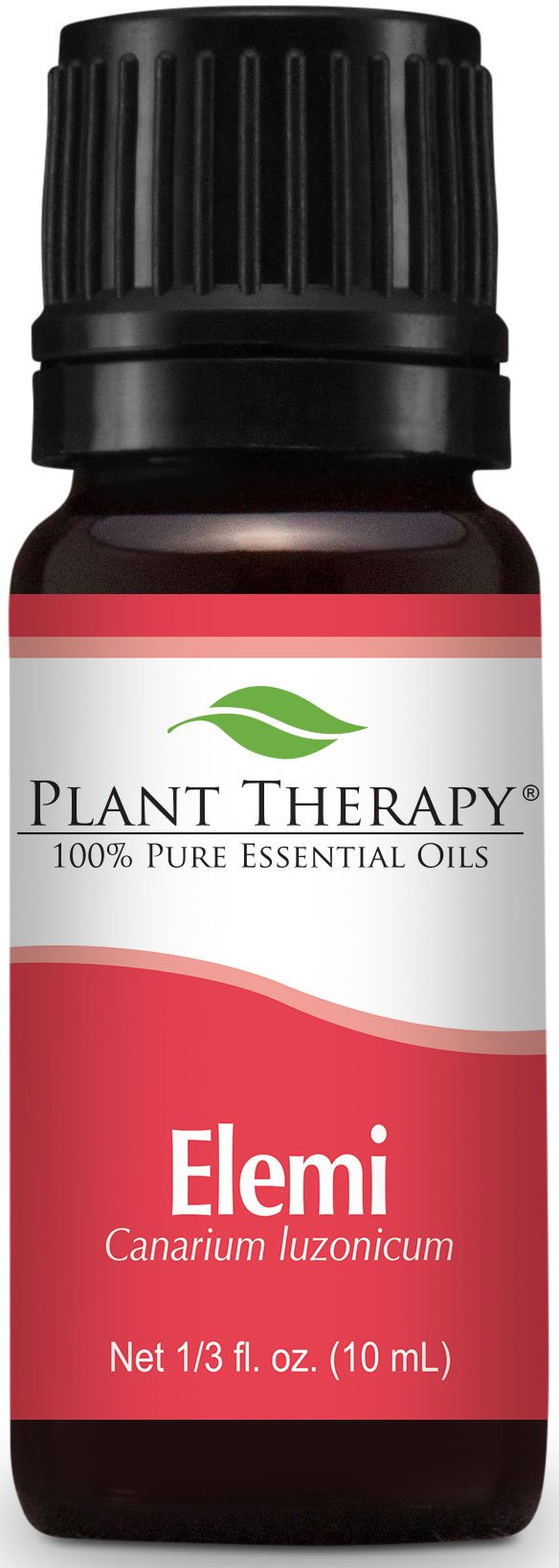 Plant Therapy Elemi Essential Oil. 10 ml (1/3 oz). 100% Pure, Undiluted, Therapeutic Grade. (Pack of 12)
