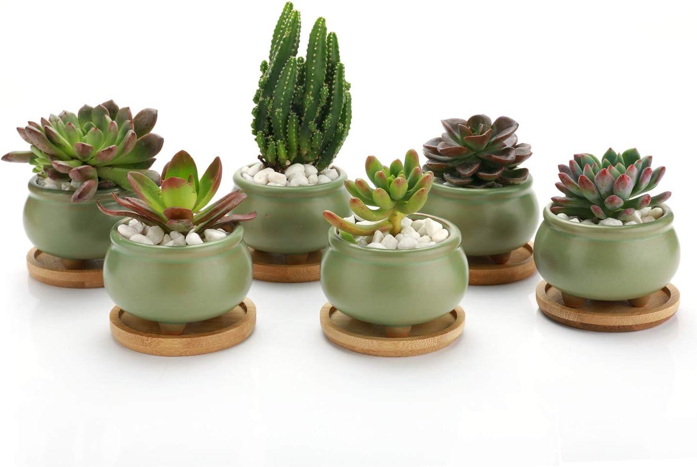 T4U 3 Inch Succulent Planters Pots Ceramic - Set of 6, Mini Cactus Planters Clay Pots Window Boxes for Home Decor Green