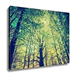 Ashley Canvas, Vintage Photo Of Beautiful Green Springtime Forest Landscape, 20x25, AG5771470