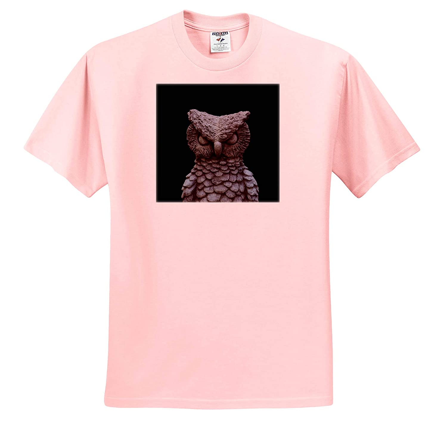 3dRose Stamp City - T-Shirts Black and White Close up Photograph of an owl Statue Miscellaneous