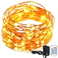 String Lights Copper Wire, GDEALER 50ft 150LED Starry String Lights Dimmable Rope Lights Remote Control Copper Wire String Lights for Christmas Party Wedding Home Indoor Outdoor Decorating(warm white)