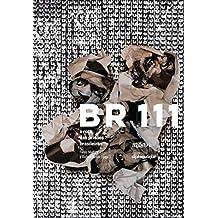 BR 111. A Rota das Prisões Brasileiras