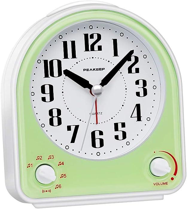 Top 9 Travel Alarm Clock Quiet Nature