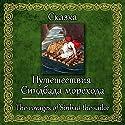 Puteshestviya Sindbada-morekhoda Hörbuch von  N.N. Gesprochen von: Oleg Isaev