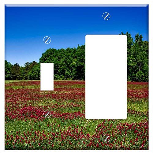 1-Toggle 1-Rocker/GFCI Combination Wall Plate Cover - Alabama Flowers Plants Wildflowers Idyll