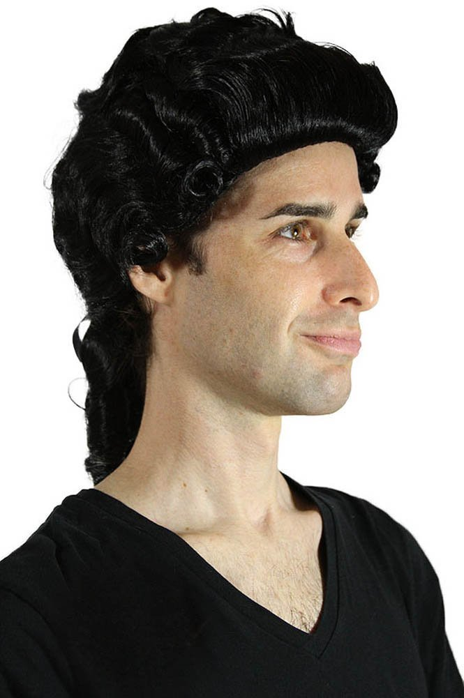 My Costume Wigs Men's 17th Century Sir Wig (Black) One Size fits all
