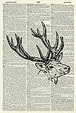 STAG'S HEAD ART PRINT - ART PRINT - WILDLIFE ART PRINT - VINTAGE ART - Illustration - Picture - Vintage Dictionary Art Print - Wall Hanging - Home Décor - Housewares - Book Print 1D