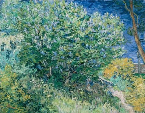 Van Gogh Couple Costume (Perfect Effect Canvas ,the High Definition Art Decorative Prints On Canvas Of Oil Painting 'Lilac Bush,1889 By Vincent Van Gogh', 16x20 Inch / 41x52 Cm Is Best For Gym Decor And Home Artwork And Gifts)