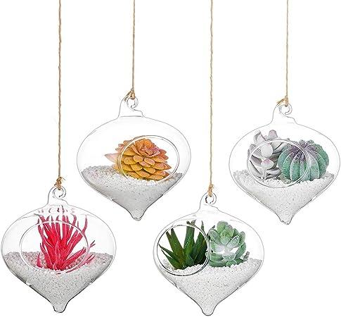 """2 x appeso a parete fioriere vasi di fiori impianto di aria di Vetro Contenitori 4/"""" di diametro"""