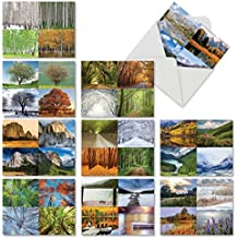 Four Seasons: 10 Assorted Blank All-Occasion Note Cards Featuring Various Landscapes and Trees as Seen Through the Seasons of the Year, w/White Envelopes. M6489OCB