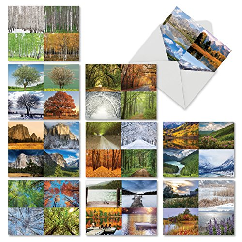 "Four Seasons Note Cards - 10 Picturesque Note Cards with Envelopes (4"" x 5 ¼""), Assorted 'Four Seasons' Blank Greeting Cards for All Occasions, Stationery for Weddings, Holidays, Thank Yous #M6489OCB"