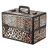 Docooler Lockable Cosmetic Organizer, Box Foldable Makeup Train Storage Case Holder, 2 Layers