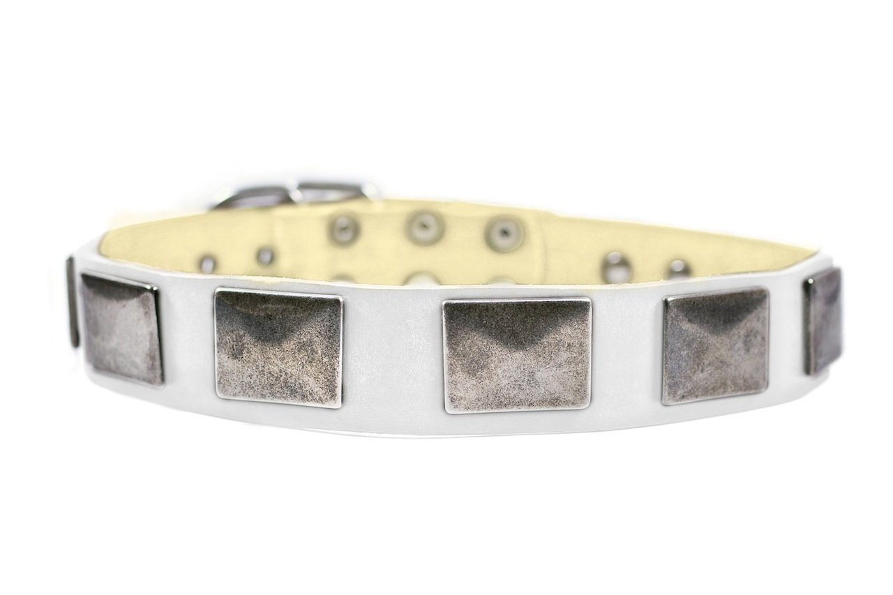 Dean & Tyler  Tyler's Vintage Leather Dog Collar with Vintage Nickel Plates, 34 by 1-1 2-Inch, Fits Neck 32 to 36-Inch, White