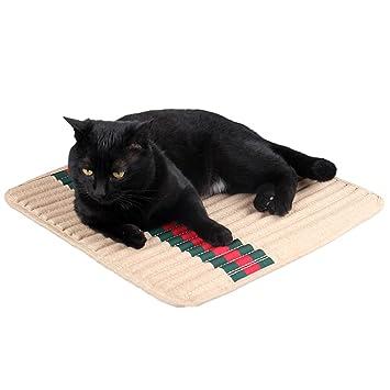 ZuckerTi Faston Matte Techo Cama cojín para Mascotas Gato Gatos Perro Cachorro Hamster: Amazon.es: Productos para mascotas