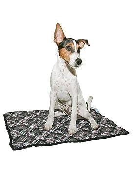 Aqua Coolkeeper - Alfombrilla refrescante para mascota: Amazon.es: Productos para mascotas
