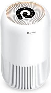 HEPA Air Purifier - Dreamegg Air Purifier for Home Allergies and Pets Hair, Super Quiet Air Cleaner True HEPA Filter with Pet Mode, Removes 99.97% Odor Allergen for Smoker Dust Mold Pollen, 269 Sq. Ft