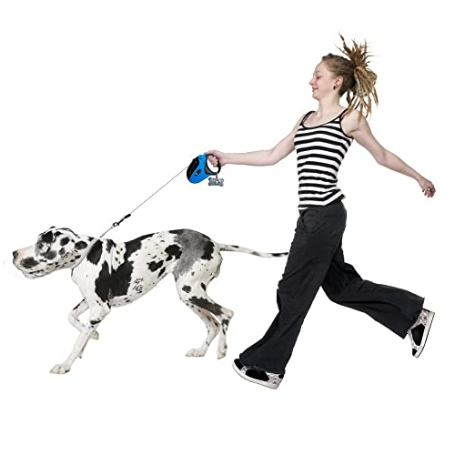 best-retractable-dog-leash