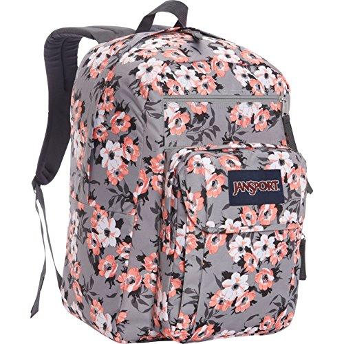 Best price JanSport Digital Student Laptop Backpack-