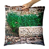 Westlake Art - Old Frame - Decorative Throw Pillow Cushion - Picture Photography Artwork Home Decor Living Room - 18x18 Inch (77EF5)