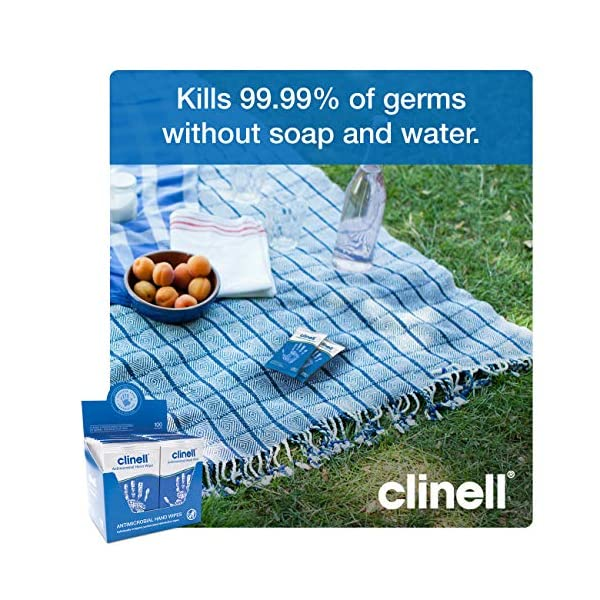 Clinell Antibacterial Hand Wipes 100 Each