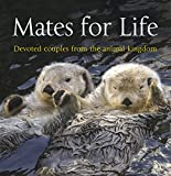 Mates for Life: Devoted Couples from the Animal Kingdom