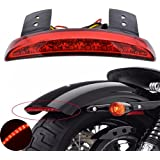 TUINCYN Motorcycle Red Lens Chopped Rear Fender Edge Plate Tail Brake License LED light Replacement Light Stop Running Light for Harley Sportster XL883N 1200N XL1200V XL1200X