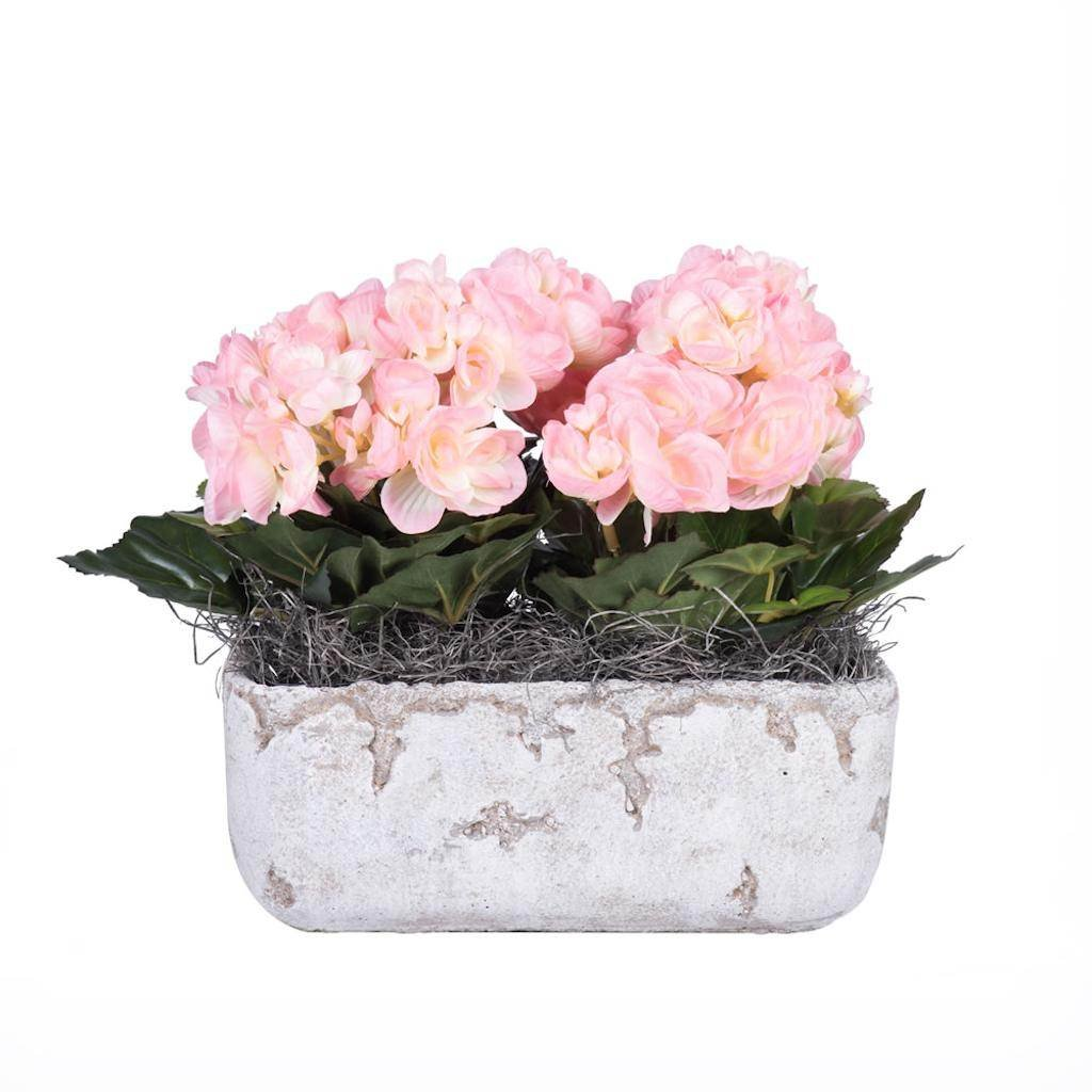 Vickerman F12226 Pink Begonia Everyday Floral