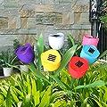 SolarEK Tulip Flower Shape Solar Powered LED Lamp Outdoor Yard Garden Lawn Path Lighting (6 Lights)