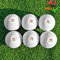 All IZ Well Field Hockey Ball/Cricket Training/Golf Training Practice Ball