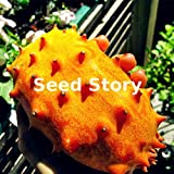 Hot Selling! Organic Kiwano Melon Seeds Nutrrtutious Vegetable Seeds Diy Home Garden 100pcs seeds of hope