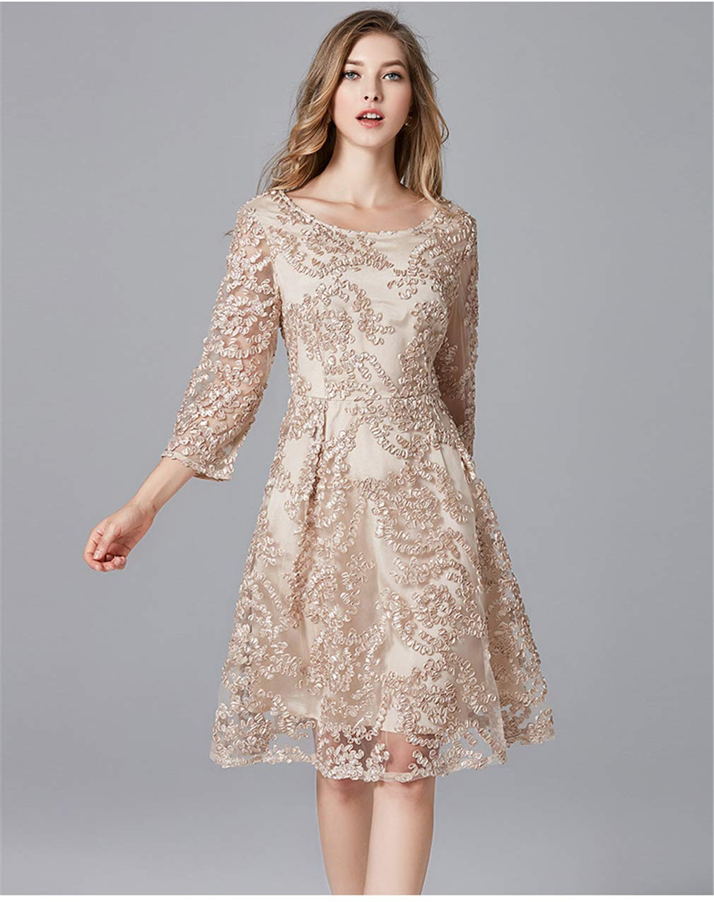 3XL Dress Plus Size Lace Mesh Embroidery Knee Length Cocktail Party Champagne Clothing (L5XL)