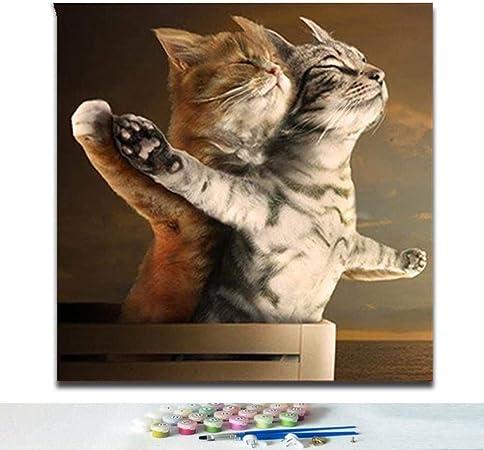 Diy Colorear Por Números Gato Lindo Pintura Digital Por Números Animal De Dibujos Animados Gato Titánico Cuadro De Amor Romántico Pintar Por Números: Amazon.es: Hogar