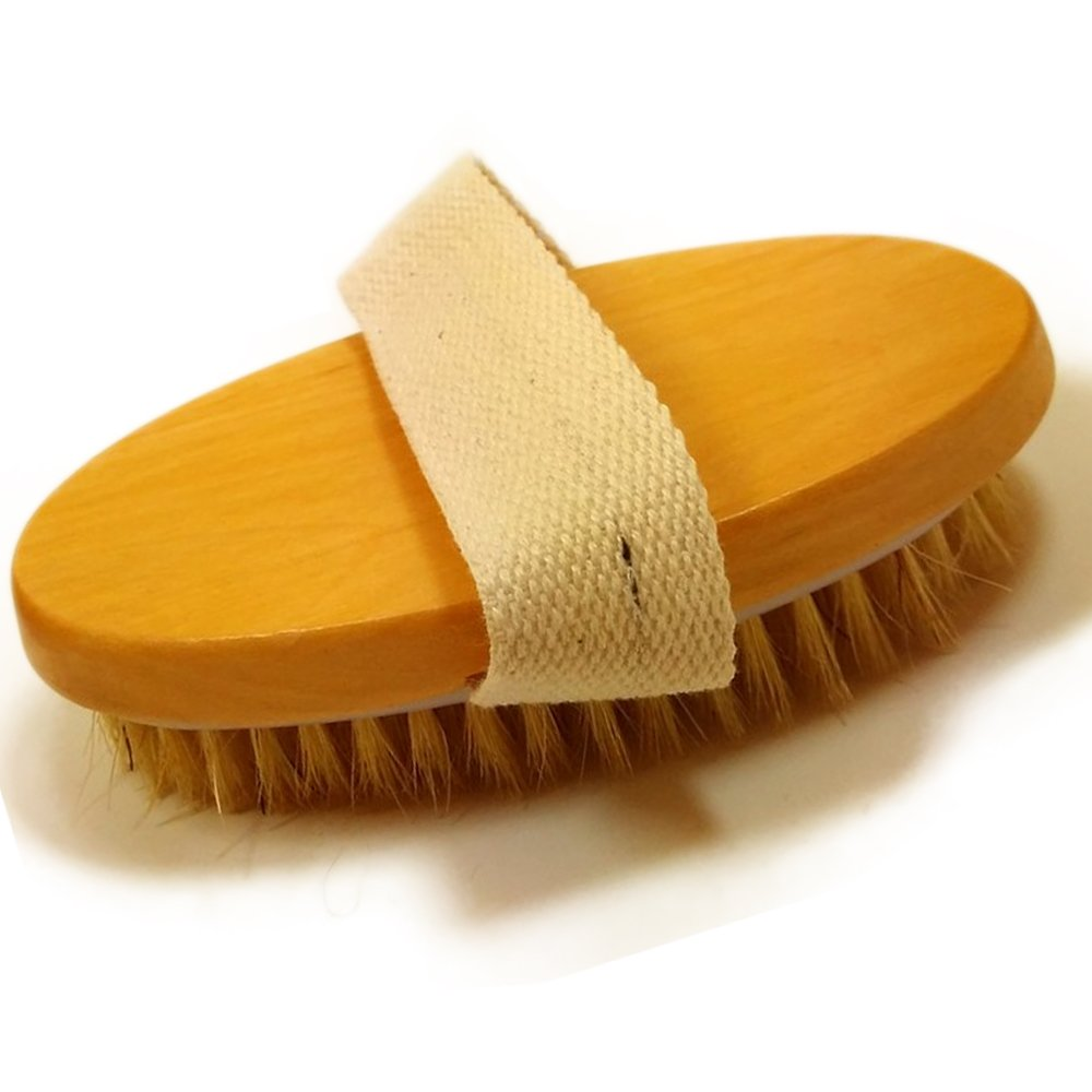 Professionelle Körperbürste mit Kaktusborsten von Glamza, für trockene Haut, natürliches Massage- und Peelinggerät, für Spa und Bad für trockene Haut für Spa und Bad