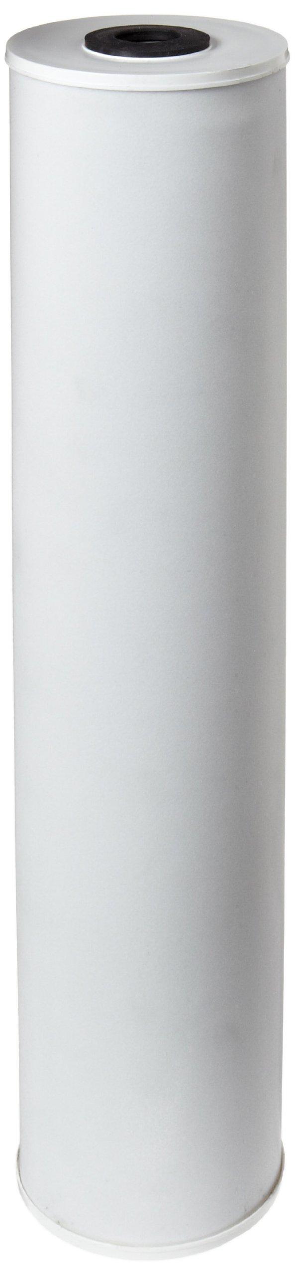 Pentek CRFC20-BB Carbon Filter Cartridge, 20'' x 4-1/2'', 25 Micron