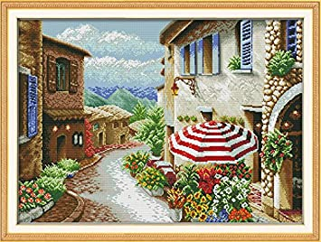 Cross Stitch Stamped Kits Cross-Stitching Pattern for Home Decor 14CT Pre-Printed Fabric Embroidery Crafts Needlepoint Kit Cat and Oil Painting